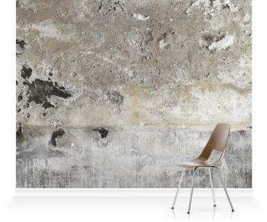 Dilapidated walls from the National Trust's hidden house, Calke Abbey.. Our wall murals bring stunning imagery to life on a large scale.