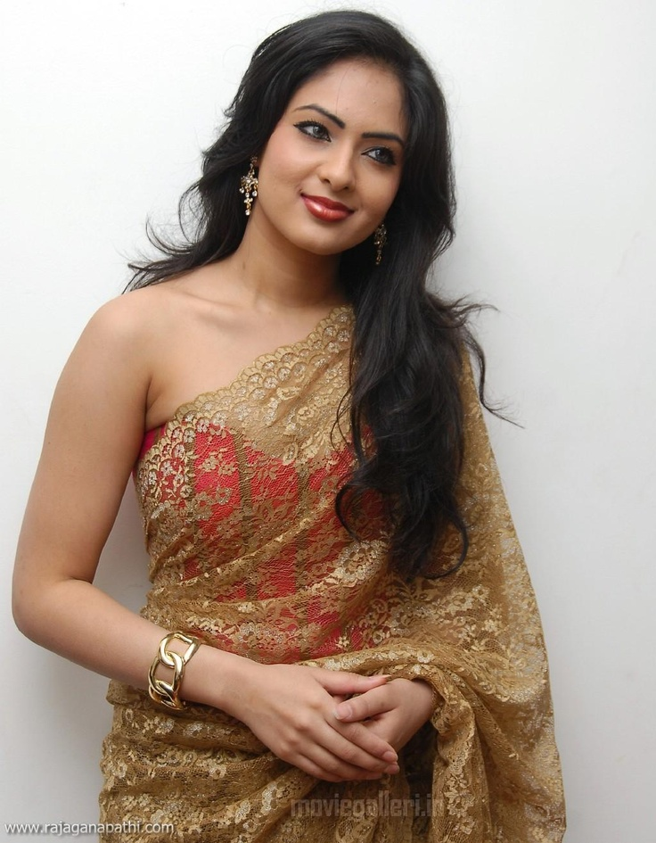 Sheer saree | ... IN+SAREE,+NIKEESHA+IN+SAREE,+NIKESHA+WEARING+TRANSPARENT+SAREE_01.jpg