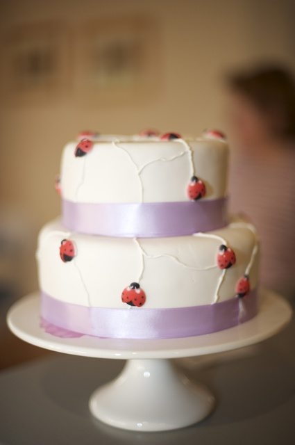 Wedding Cakes Danville Va
