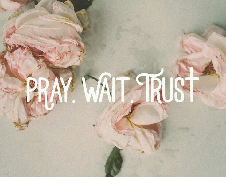 """Pray wait trust for the man God is preparing for you. The Godly man that one day will say """"Will you marry me?"""""""