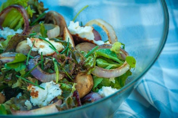 Mixed salad leaves with grilled mushrooms,onions and manouri cheese