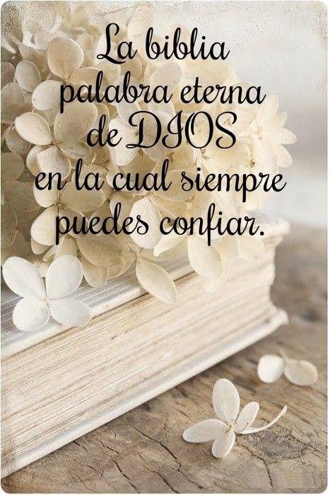 La Biblia palabra eterna de Dios, en la cual siempre puedes confiar.