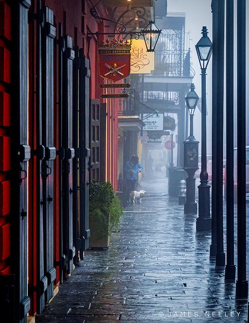 Foggy morning in French Quarter, New Orleans, Louisiana, USA  (by James Neeley on Flickr)