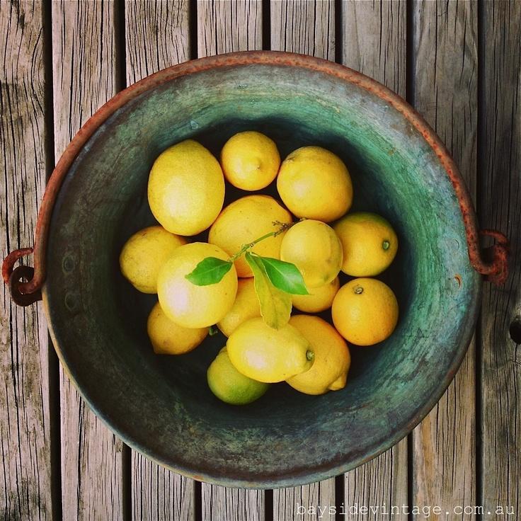 Last of the lemons in rustic copper pot beautiful patina