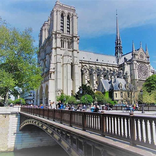 🇫🇷The beautiful Notre Dame during the Spring 😍