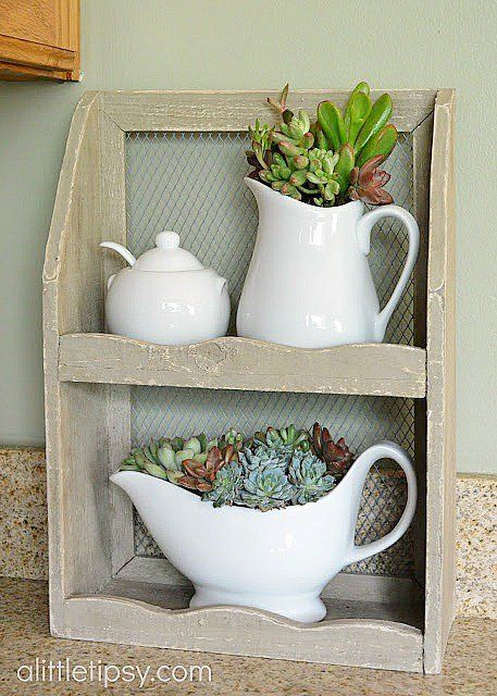 Bright kitchen window-succulents planted in white ceramic pitcher & gravy boat by A Little Tipsy