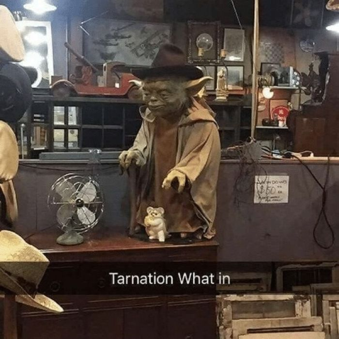 Tarnation what in