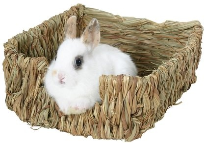Is this bunny loving this nest or what?