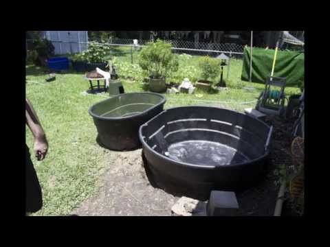 Above ground pond youtube water feature pinterest for Pond shade ideas