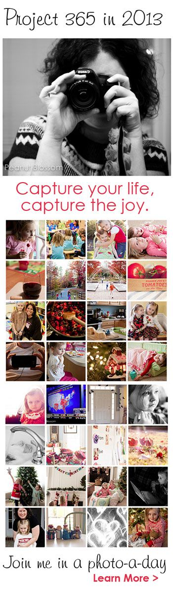 {Project 365} Are you looking for a fun challenge for the new year? Have you ever tried a photo a day project? If you're looking for fun and inspiration, please join us!