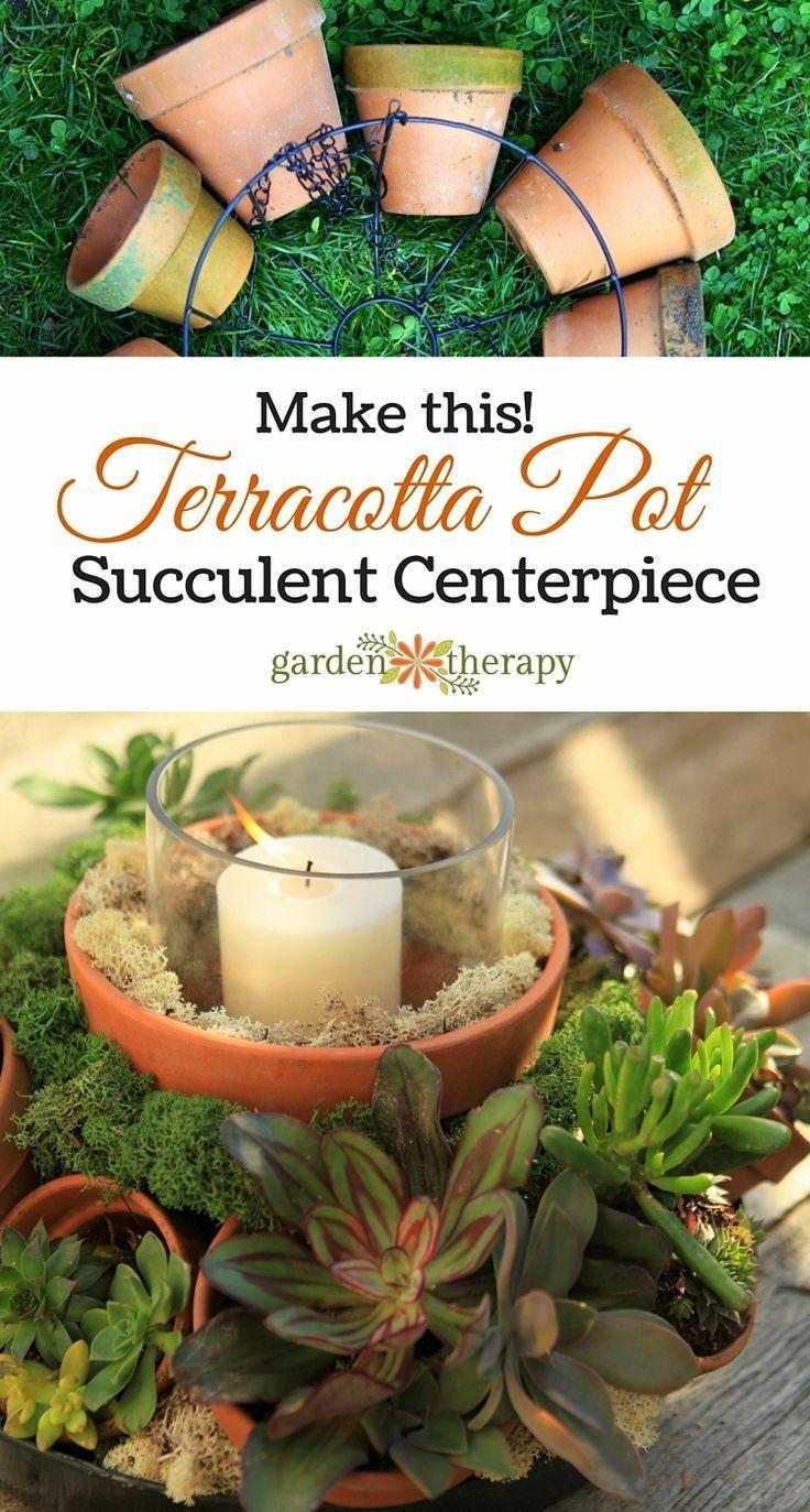 terracotta pot succulent centerpiece