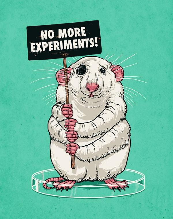 No more experiments !!! 100%de acuerdo.