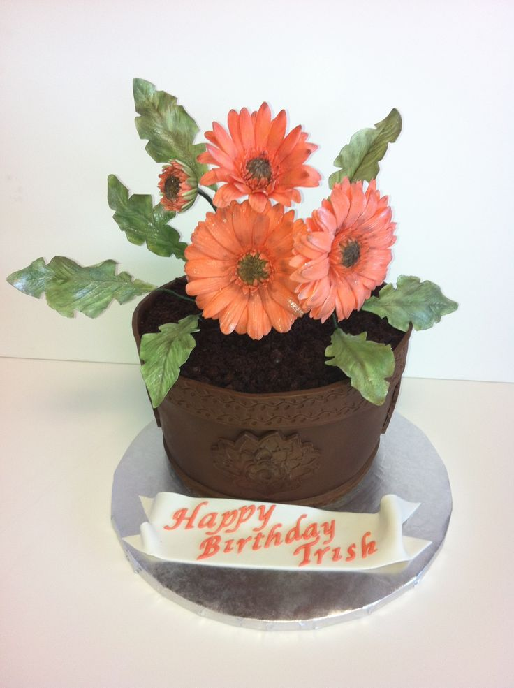 Gerber Daisy - Three layers of chocolate cake, two layers of Cran-Raspberry SMBC and fresh raspberries. The cake is carved to the shape of a flower pot, covered in modelling chocolate. I used Wilton?s Global Fondant and Gum Paste Mold to decorate the pot. The Gerber Daisies and the leaves are handmade from sugar paste, dusted with petal dust. The ?dirt ?is chocolate cake crumbs and the ribbon is sugar paste.