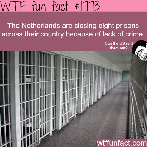 The Netherlands are running out of crime - WTF fun facts