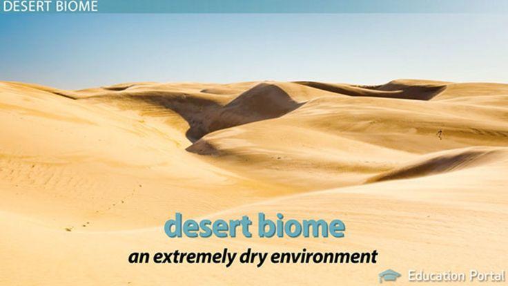 Desert Biomes: Facts, Climate & Locations - Video & Lesson Transcript | Study.com