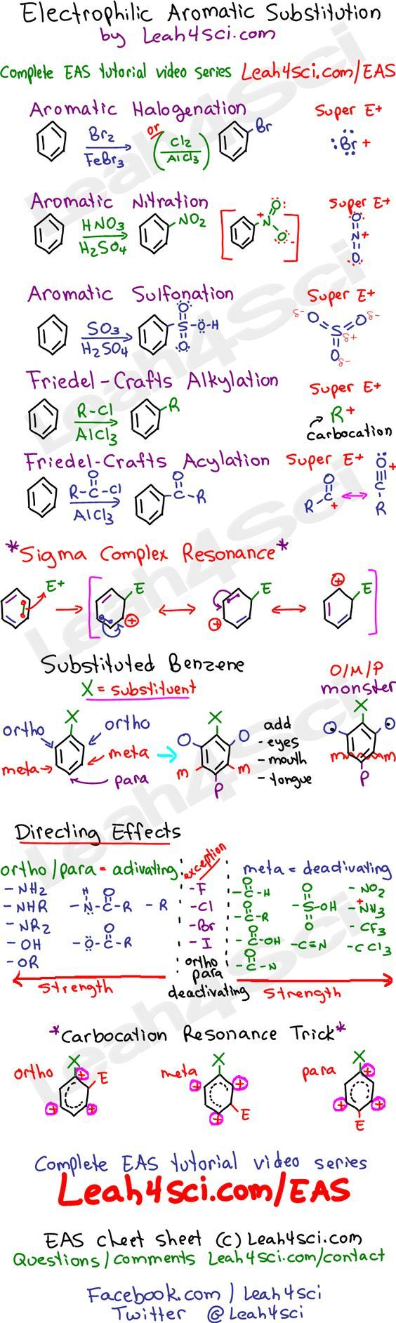 Organic Chemistry Study Guide PDF for Exams