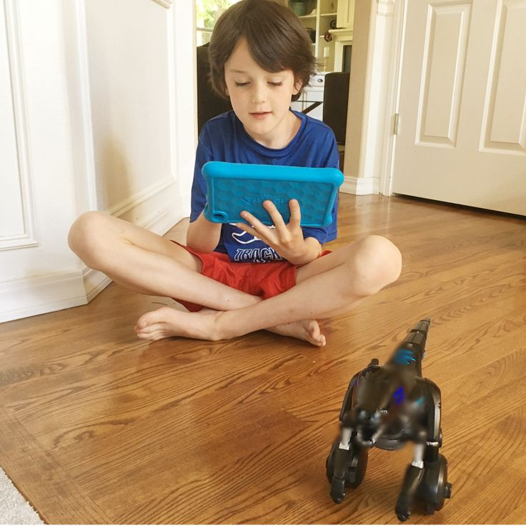 kindle fire apps for kids that prevent summer brain drain http://redtri.com/fire-kids-edition-apps-that-prevent-summer-brain-drain/?utm_term=Read%20More&utm_campaign=Daily%3A%207%2F19%2F2017%3A%2020%20Things%20You%20Should%20Say%20to%20Your%20Kids%20Every%20Single%20Day&utm_content=email&utm_source=Act-On+Software&utm_medium=email&cm_mmc=Act-On%20Software-_-email-_-20%20Things%20You%20Should%20Say%20to%20Your%20Kids%20Every%20Single%20Day-_-Read%20More