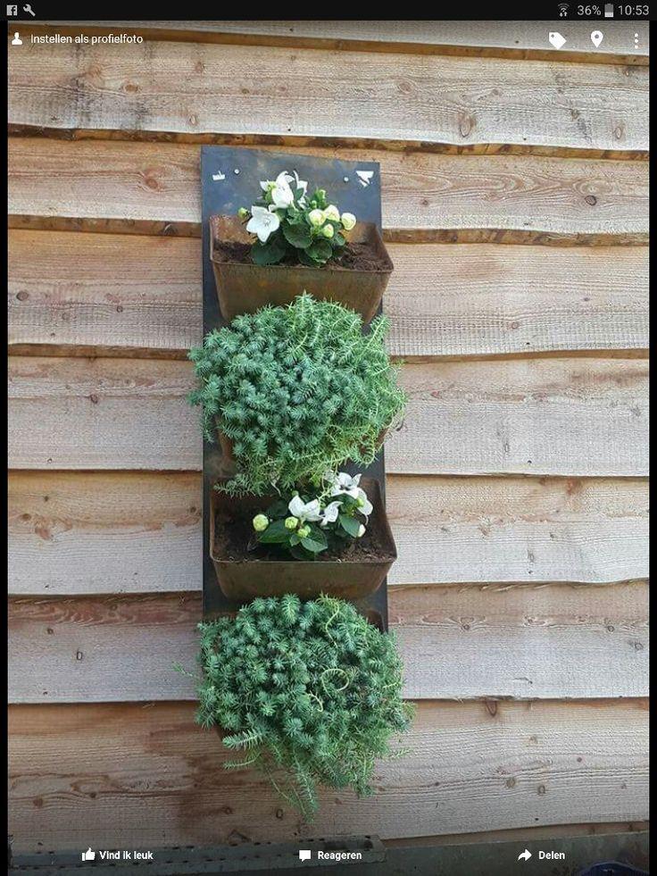 Ze zijn er weer!  Wordt jouw tuin ook steeds somberder? Fleur die dan op met mooie, stoere bloembakken. Erg mooi met bijvoorbeeld  rotsplantjes of rode of witte heide.  Deze grote bakken (uit een fabriek voor veevoer) zitten nog per 3, 4 of 5 op de lopende band. Ook zijn ze per stuk of per 2 te koop. Versturen in overleg. We kunnen ze eventueel meenemen naar Steenwijk. 20 euro per bak met een deel van de band om aan op te hangen! Maat :35 cm breed en ong. 20 cm hoog per bak.