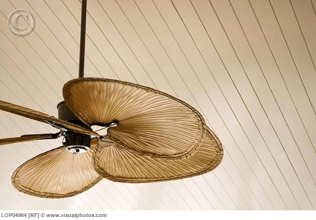 Palm frond style blades on a ceiling fan will add a tropical feel to the breeze in a room.