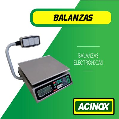 Balanza Electronica Modelo 2