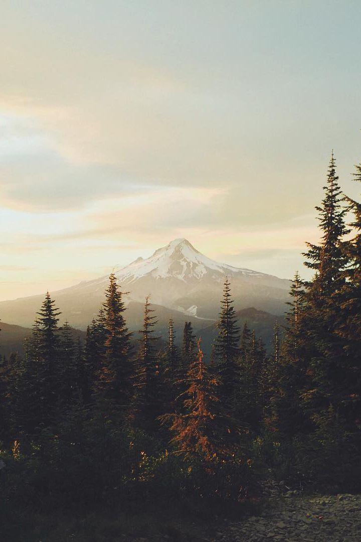 New Post On Folklifestyle Nature Photography