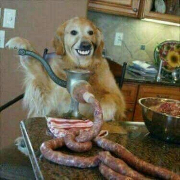 39 No Context Cursed Images Of Disturbing Weirdness Weird Images Cursed Images Funny Pictures