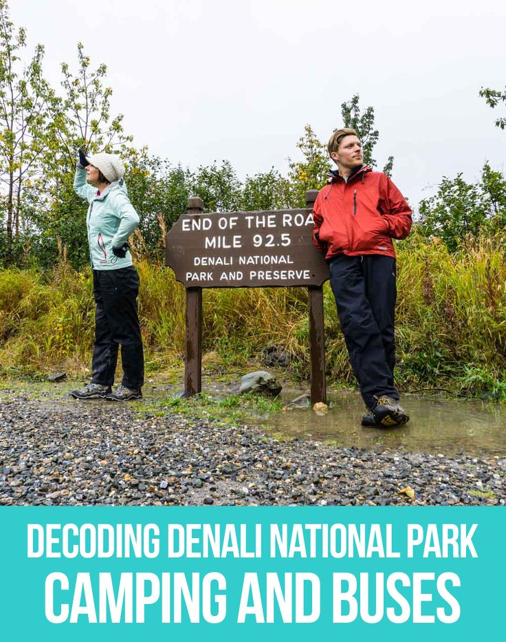 If you're planning a trip to Denali National Park and feeling like you need a decoder ring to figure out the different buses, campgrounds and fees...this one is for you! #Denali #Camping #Alaska
