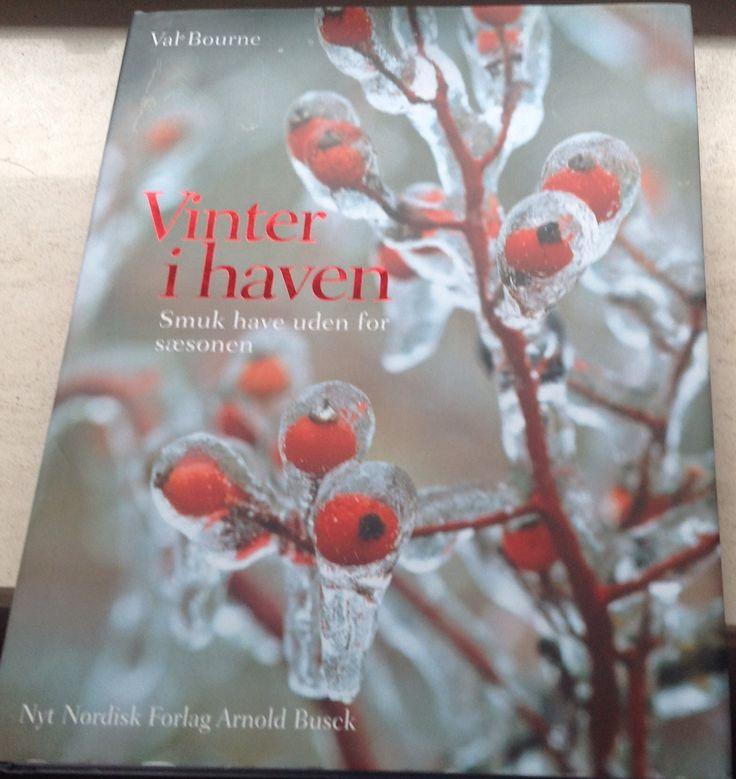 Val Bourne - Vinter i haven