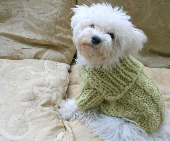 Winter Dog Sweater. Handmade Dog Clothes. Pet Clothing. Hand Knit Pastel Color Dog Clothes. Button Dog Sweater by BubaDog