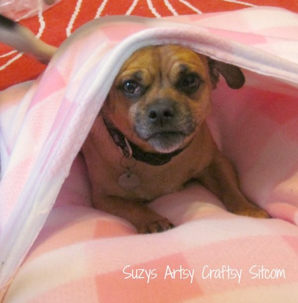 """""""Envelope"""" Dog bed tutorial and pattern - If you have cats like mine, this would also be well loved. Just make sure if you use it for cats you disguise it as something that isn't supposed to be for them - otherwise they won't use it."""