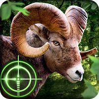 Wild Hunter 3D 1.0.6 MOD APK Unlimited Money  arcade games