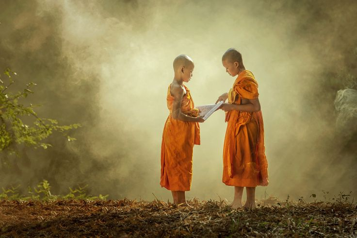 Become enlightened - Monks The Buddhist missionary in Thailand Will be ordained To study the doctrine of the Lord Buddha. In order to do Exodus To teach people.