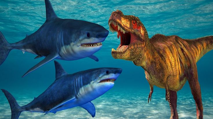 Shark Vs Dinosaurs Fighting Learn Farm Animals Names And Sounds Lion Vs Dinosaurs Fight For Kids