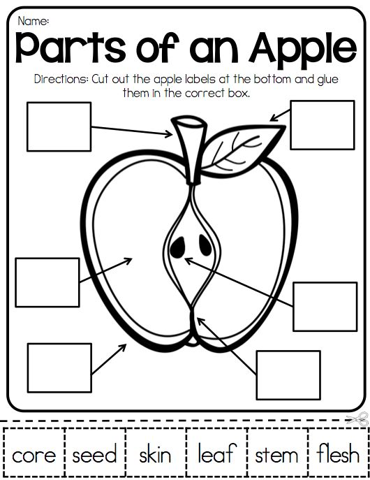 17 Best Apples Images On Pinterest Teaching Ideas Glad Strategies