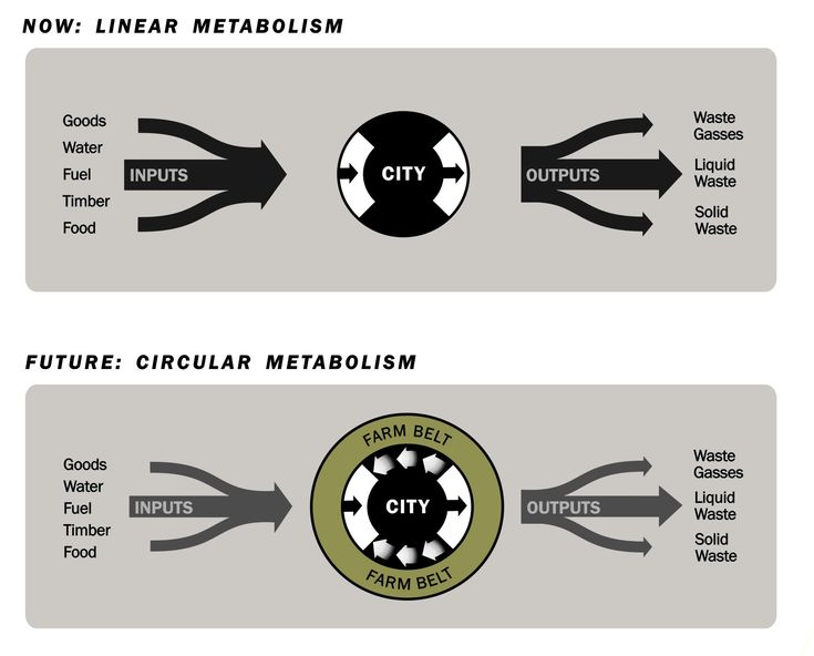 circular metabolism 32 a new streamlined urban metabolism methodology   1 introduction 2 a  circular economy pertains to a system wherein wastes are eliminated or.