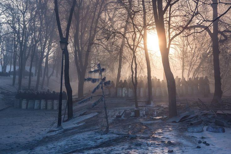 24.01.2014 r., Ukraina, Kijów: Oddziały milicji zgrupowane w parku. (Foto: Brendan Hoffman/Getty Images)