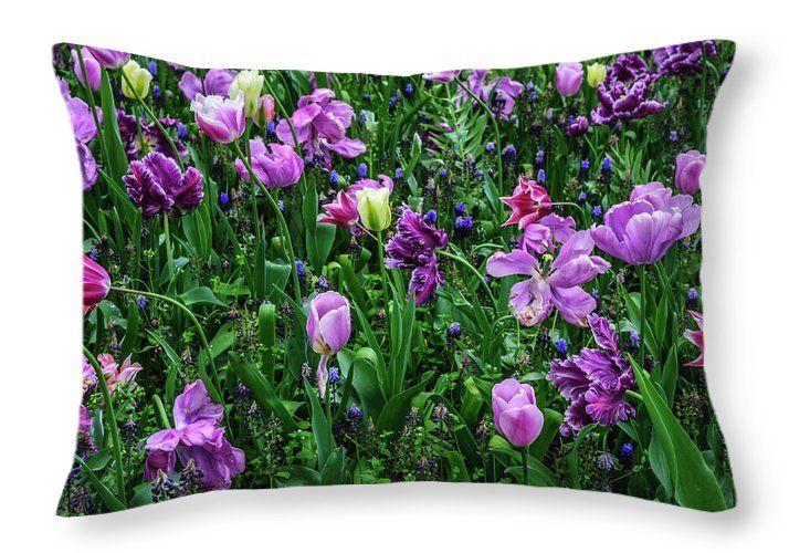 Jenny Rainbow Fine Art Photography Throw Pillow featuring the photograph Carpet Of Purple Tulips In Keukenhof by Jenny Rainbow