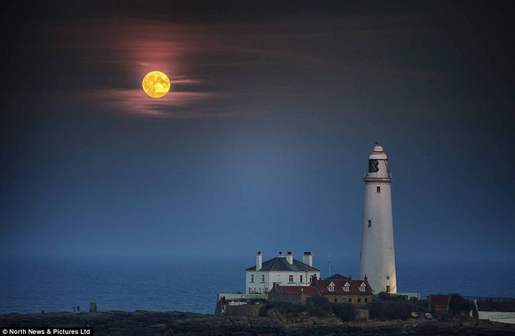 Illuminating the night: The supermoon rises into the sky over St Mary's Lighthouse in Whitley Bay, North Tyneside
