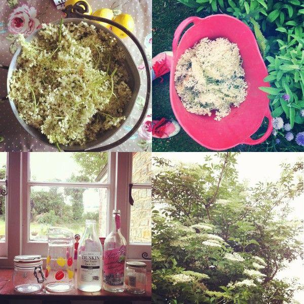 ... | Pinterest | Elderflower Cordial, DIY tutorial and DIY and crafts
