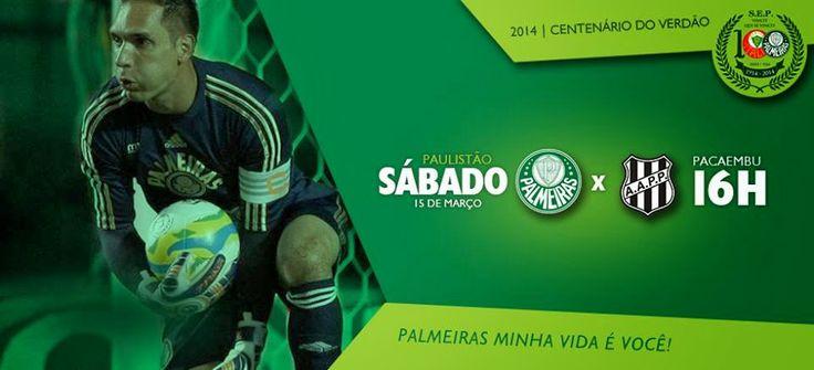 CLUBE DO TORCEDOR AUCON: CAMPEONATO PAULISTA 2014