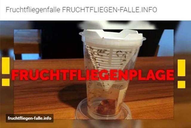1000 ideas about fruchtfliegenfalle on pinterest. Black Bedroom Furniture Sets. Home Design Ideas