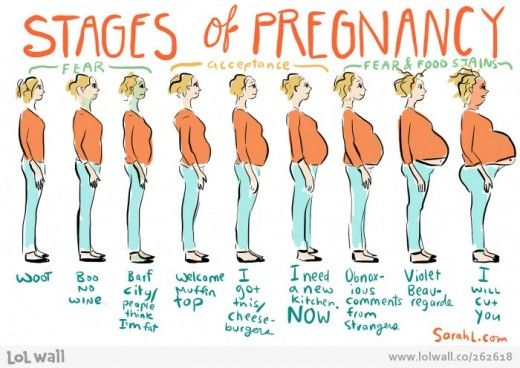 Month By Month Pregnancy Guide