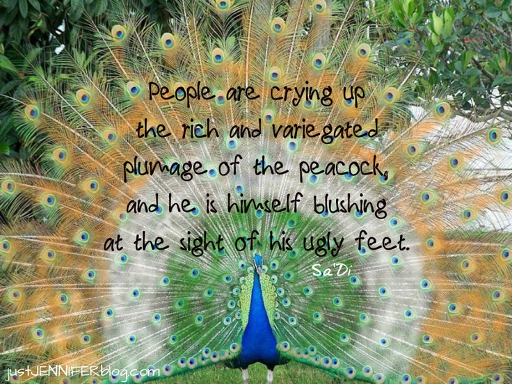 peacock quote