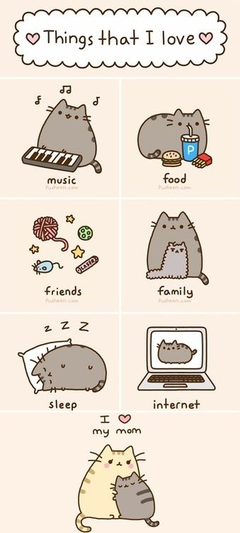 This is like everything I like.Me and pusheen are best friends now.He likes everything I like.
