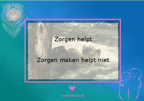 Kun je het verschil voelen tussen zorg dragen en je zorgen maken? #Teder Hart #Open Hartje #citaten #uitspraken #Zorgen #Loslaten