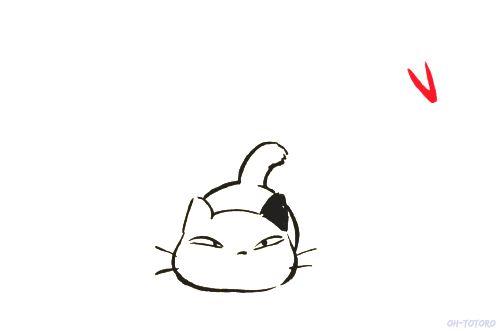 playful cat gif