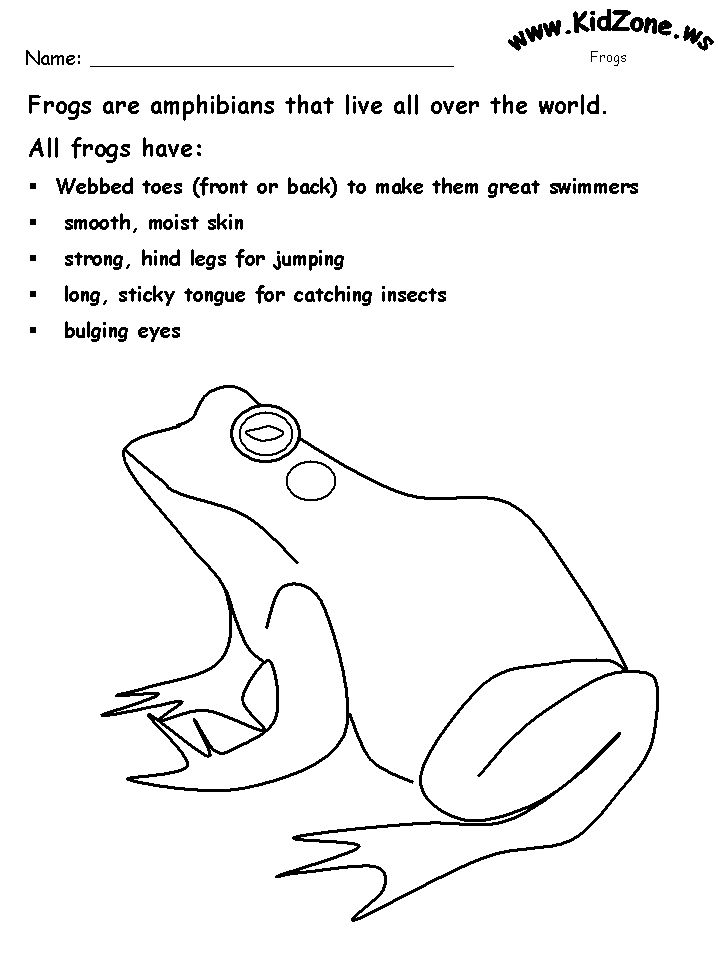 frog worksheet homeschool pinterest worksheets and frogs. Black Bedroom Furniture Sets. Home Design Ideas