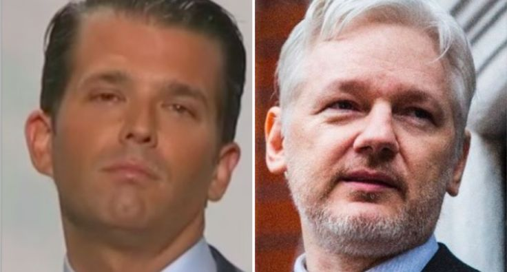 Wikileaks coordinated with Donald Trump Jr. in vicious attack against anti-Trump website