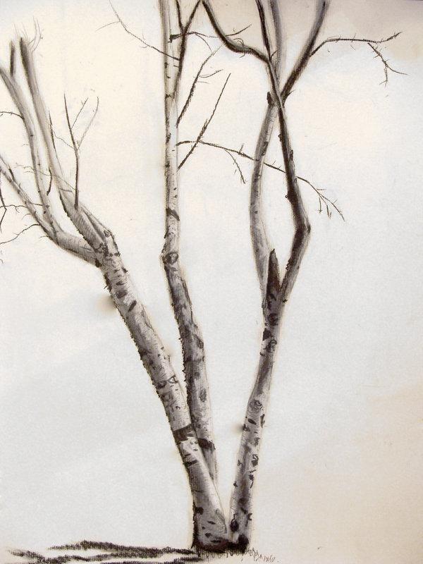 Birch tree tattoo | Tattoo ideas