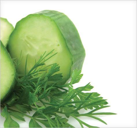 Best Juicing Recipes for Fruits & Vegetables | BELLA NutriPro Cold Press Juicer